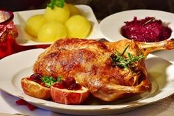 тушка утки на блюде с соусом и гарниром