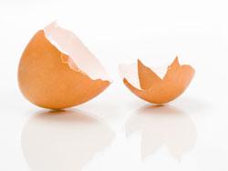 Яичная скорлупа - польза и вред