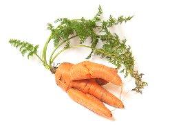 Как правильно варить морковь?