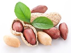 Арахис - польза и вред, калорийность