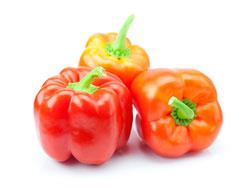 Болгарский перец - полезные свойства, калорийность и вред