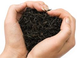 Польза черного чая для организма человека