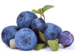 Чем полезна ягода голубика для организма человека?