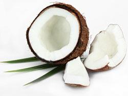 Кокос - полезные свойства, калорийность и вред