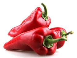 Красный жгучий перец - польза и вред для организма человека