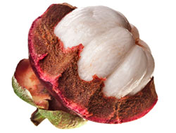 Фрукт мангустин - полезные свойства и противопоказания