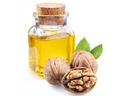 Масло грецкого ореха - польза и вред для здоровья женщин и мужчин