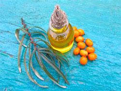 Облепиховое масло - польза и вред для организма человека