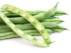 Стручковая фасоль - полезные свойства, калорийность и вред